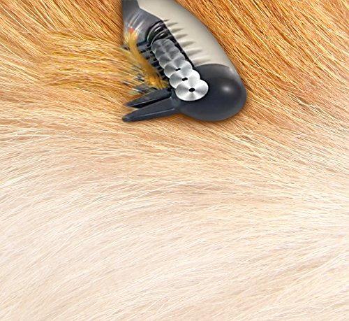 peine para aseo de mascotas eléctrico allstar innovations