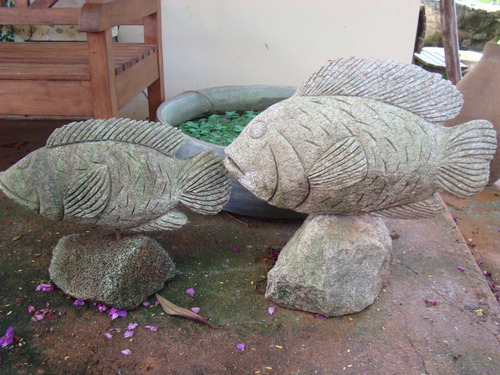 peixe em pedra