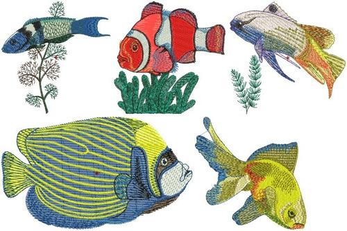 peixes tropicais - 56 matrizes de bordados comput  via email