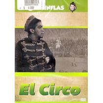 Animeantof: Dvd Cantinflas El Circo - Gloria Lynch Schillins