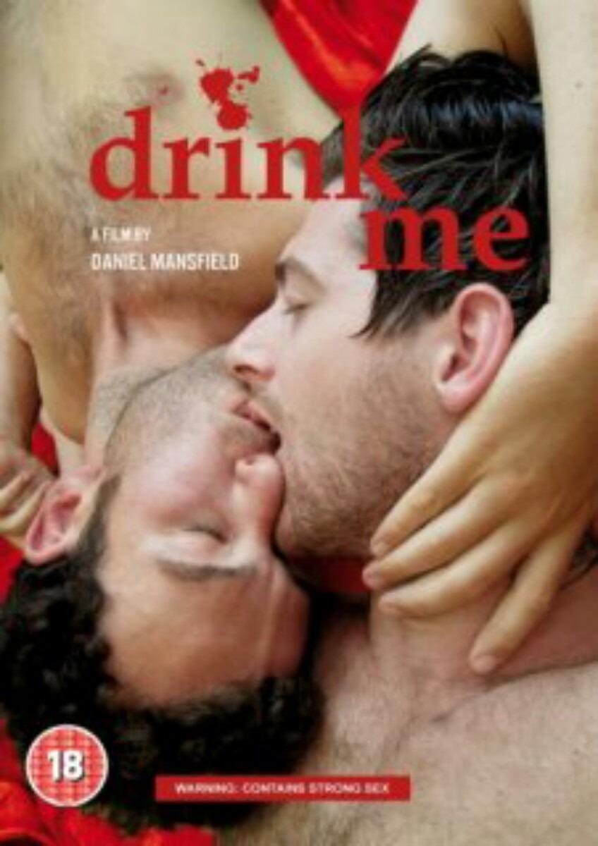 abraham lincon book gay