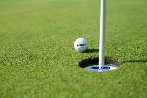 pelota de golf.-