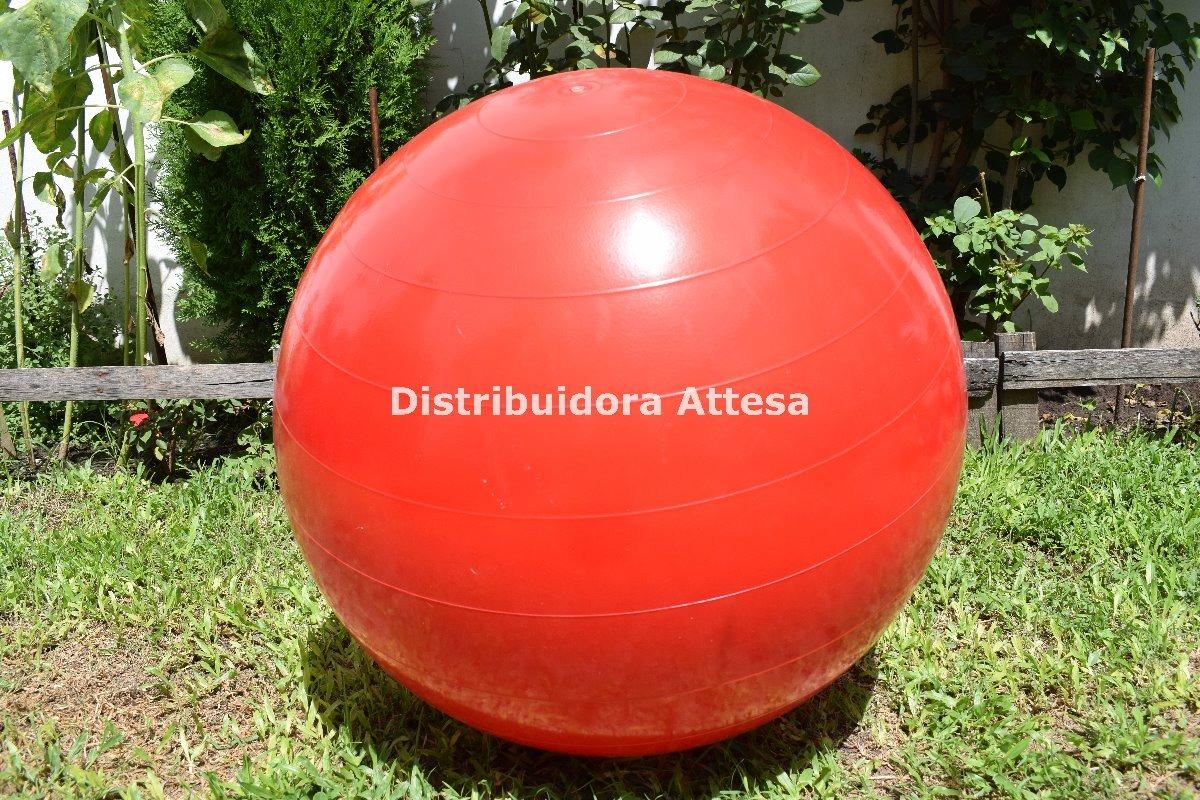 pelota esferodinamia gym ball 75 cm 1200 gramos pilates reha. Cargando zoom. 01d4561af0cf