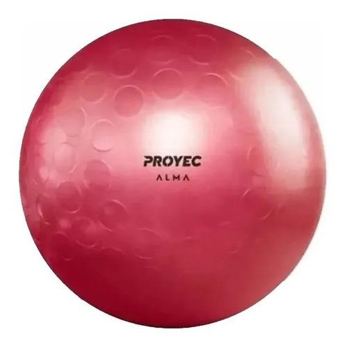 pelota yoga esferodinamia suiza 65 cm suiza cuotas
