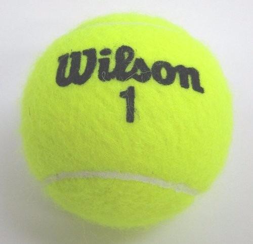 pelotas de tenis wilson championship