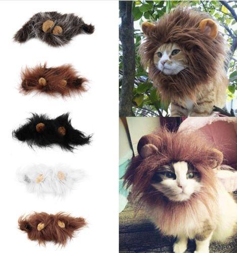 peluca para gatos y perros