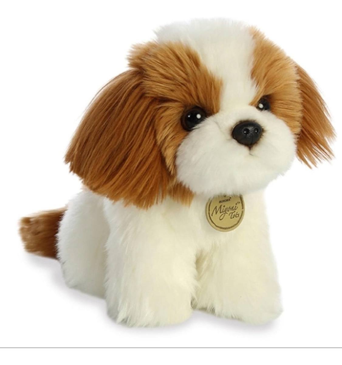 Perrito Shih Tzu Puppy Miyoni Aurora
