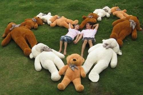 peluches osos oso gigantes 2 dos metros