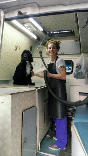 peluqueria canina movil  washcan