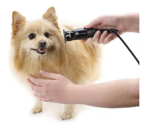 peluquería mascotas maquina