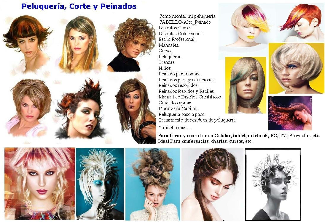 Peluqueria Peinado Estilista Corte Cursos Coifeur Trenza X20 397