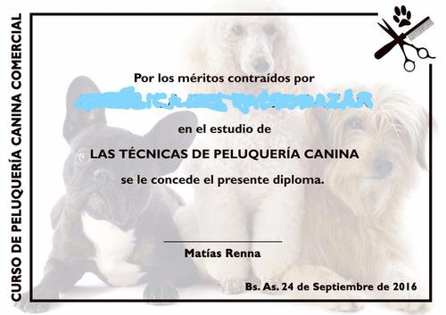 peluquero canino-felino profesional a domicilio / cursos