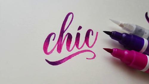 pen brush brushpen ecoline marcadores pincel violetas