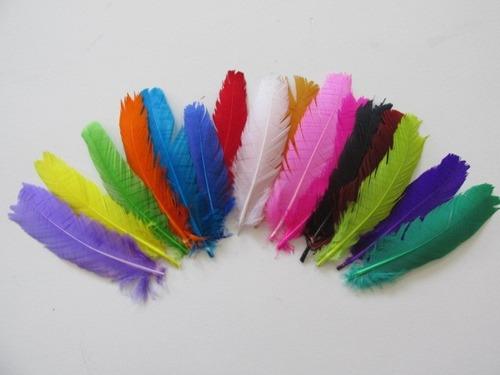 penas coloridas 100 unidades