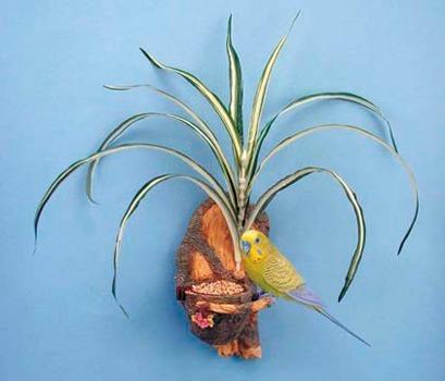 penn plax comedero para pajaros con planta
