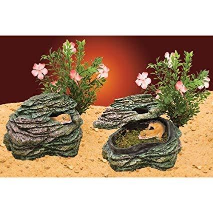 penn plax cueva o casa reptiles mediana, 18 x 15 x 11  cms