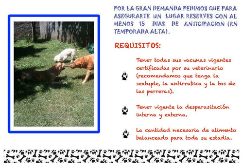 pensionado y guarderia canina casa de familia en olivos