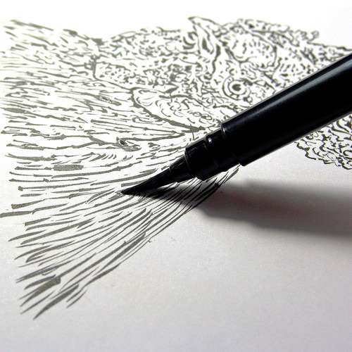 pentel pluma pincel arte bolsillo incluye 2 recargas tinta