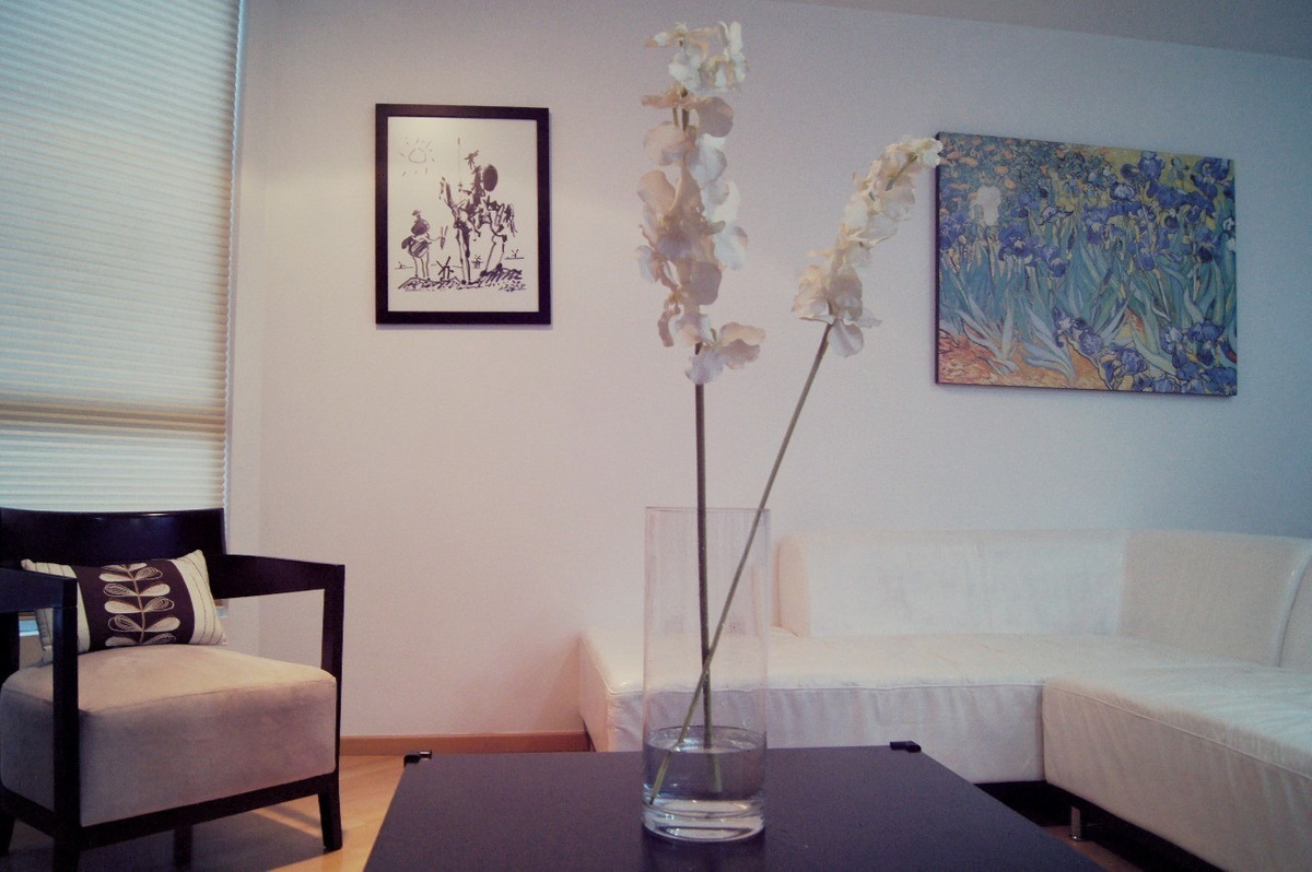 penthouse. ideal for long-term stays. san jose insurgentes.
