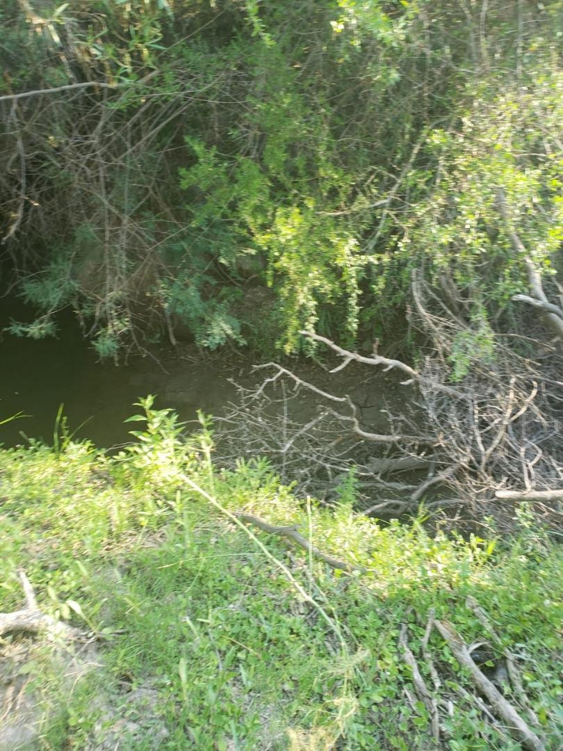 pequeña chacra de 4 has sobre ruta lindando con rio conlara