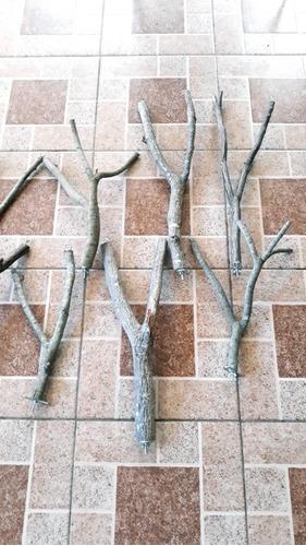 perchas de madera,ramas  para loros y aves en general.