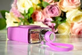perfume feminino ella victorinox edt 75ml swiss army