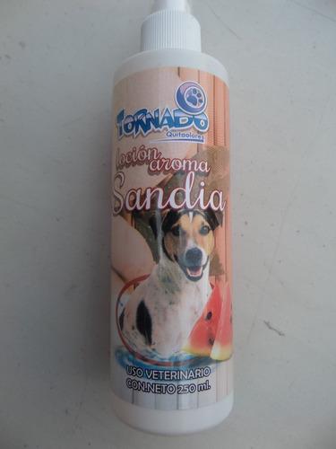 perfume perro mascotas