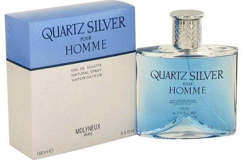 perfume quartz silver pour homme eau de toilette 100 ml