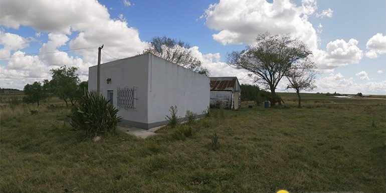 permuto depto en capital federal  -chacra uruguay,  5 has -