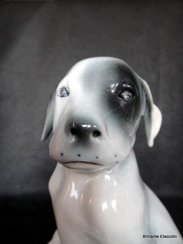 perrito cachorro sentado porcelana sellada europeo