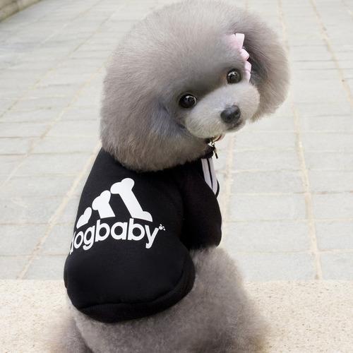 perro animales ropa