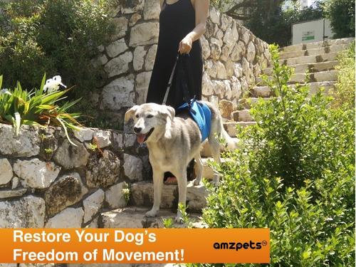 perro ascensor arnés por amzpets - soporte honda ayuda a los