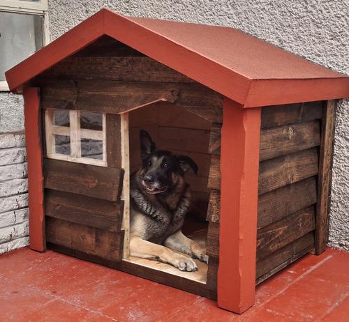 perro grande casa