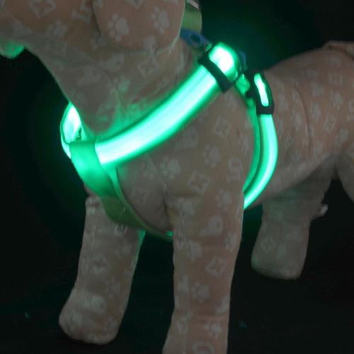 perro mascota arnés