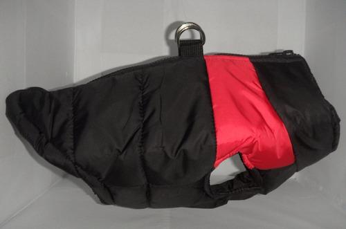 perro mascota chaqueta