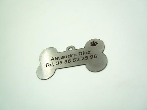 perro mascota placa