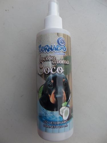 perro mascotas perfume