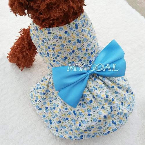 perro vestido mascotas