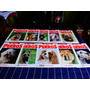 Enciclopedia Mis Amigos Los Perros Fasciculos Del 1 Al 20.