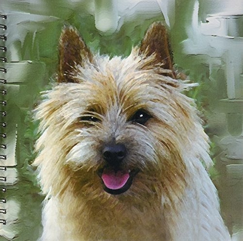 perros cairn terrier  cairn terrier  dibujo libro