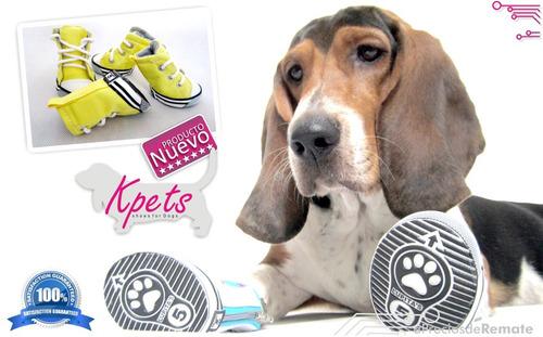 perros calzado mascota