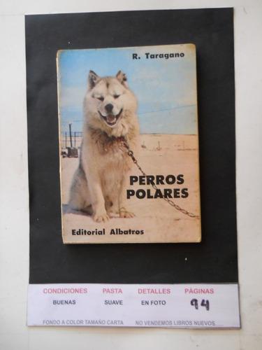 perros polares - tarragano envio gratis