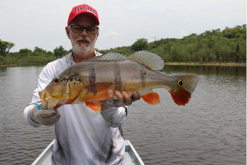 pesca esportiva amazônia novo airão amazônia fishing ecotour