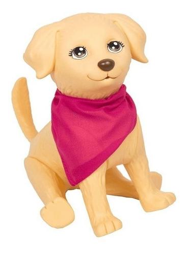 pet da barbie cachorrinho veterinário com gesso termômetro