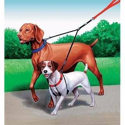 pet king® correa doble acero para paseo 2 perros / pharmavet