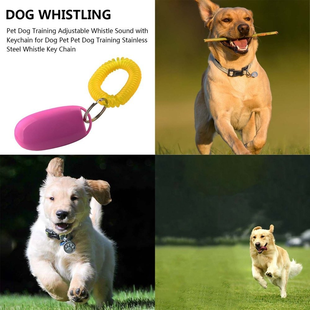 Pets Clicker Training Obedience Aid Wrist Spring Strap Button Dogs Puppy Agility