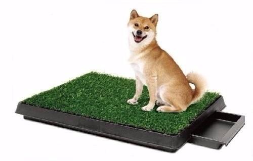pet potty - baño para perros - portatil - original y calidad