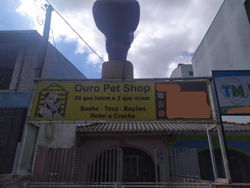 pet shop e estetica animal