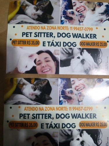 pet sitter ,dog walker e táxi dog