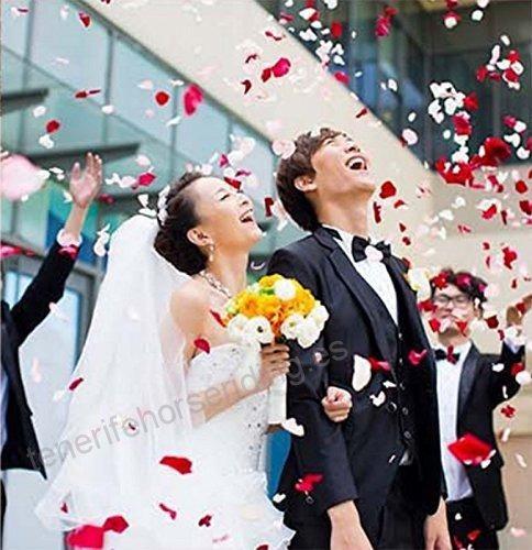 pétalos de rosas en confetty